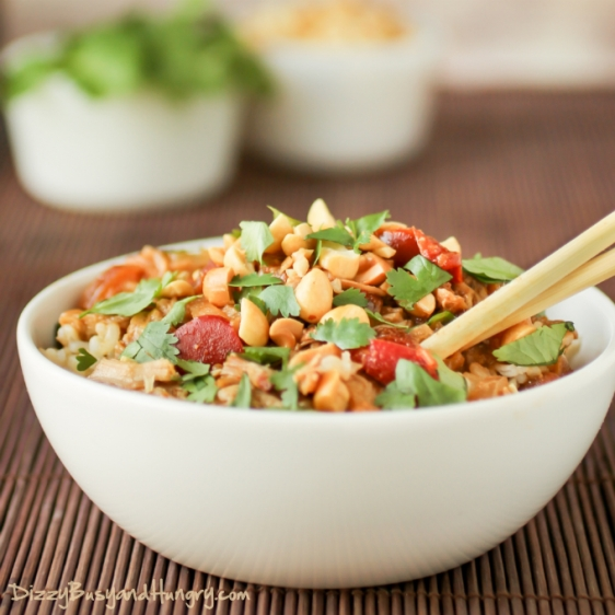slow-cooker-thai-spicy-peanut-chicken-1.jpg